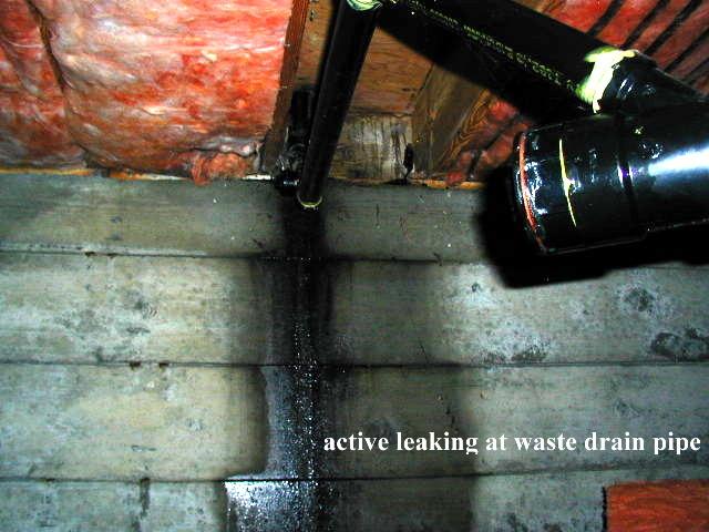 Waste Line Leak Leak on Waste Line
